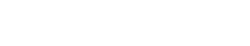 Newsroomie logo